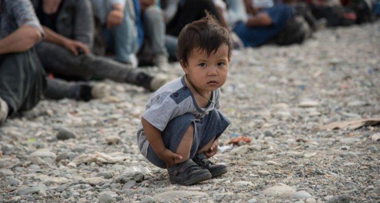 Profughi minori non accompagnati, Marziale: intervenga il governo